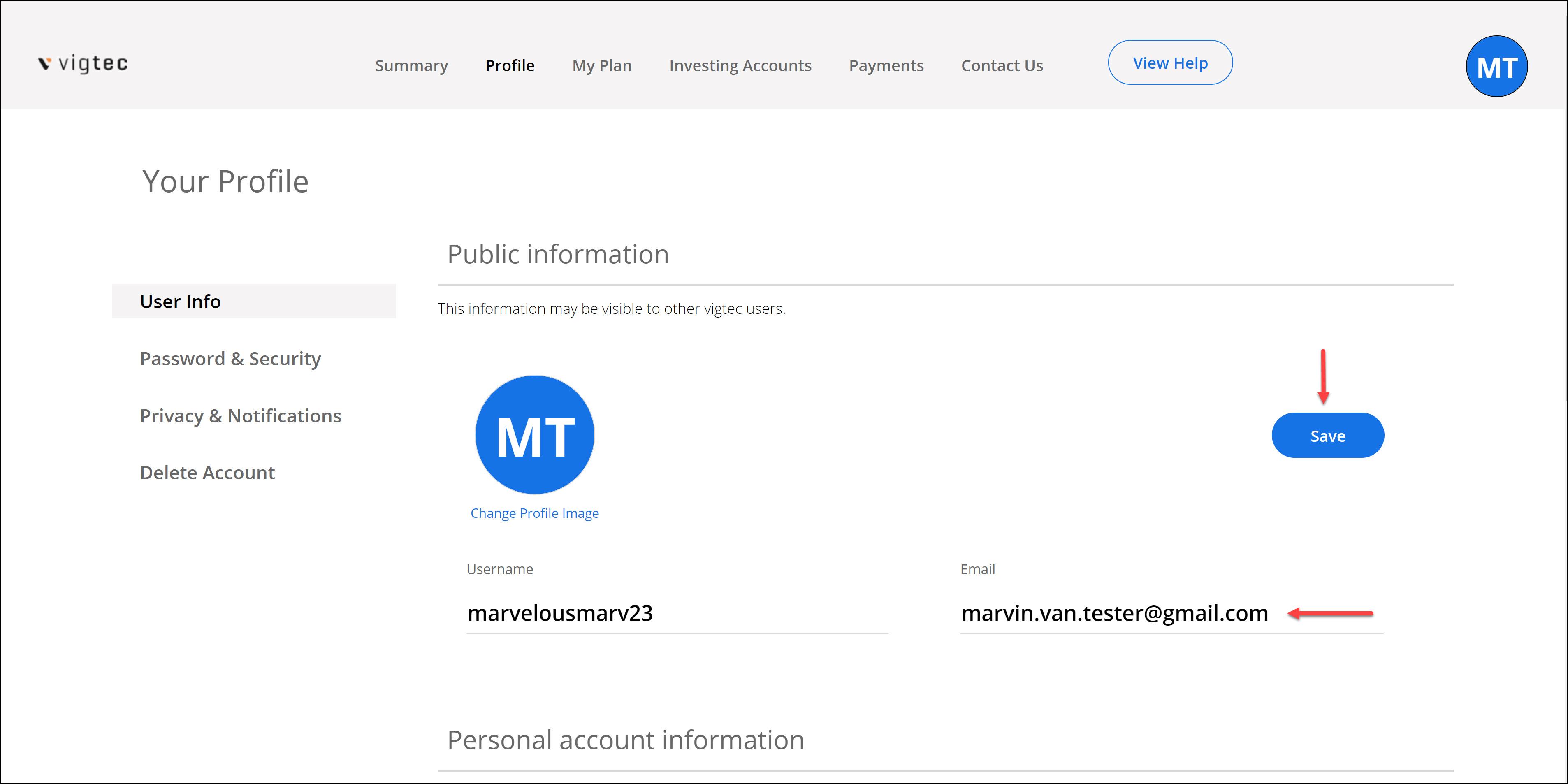 vig.io Save User Info